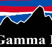 Phi Gamma Delta Red White and Blue Sticker