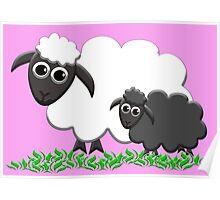 Black Sheep Lamb & Mom in Pink Poster