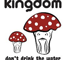 The 10th Kingdom: The Mushrooms by Casi Cline