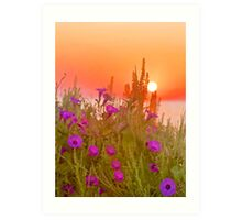 Glorious Morning Art Print