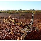 Red Dirt Devil by Dave  Grubb