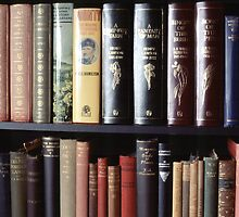Books on a bookshelf by DBigwood