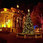 The Courthouse Plaza by Diana Graves Photography