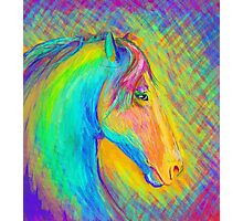 Horse painting 3 Photographic Print