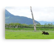 And That is a Moose Canvas Print