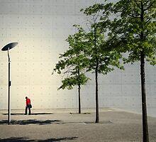 In the spotlight by philmfoto