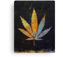 Cannabis Canvas Print