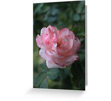 Rose V Greeting Card