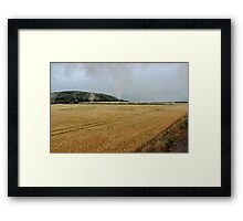 Countryside from a steam train Framed Print