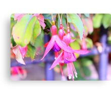 The Bell Flower Canvas Print