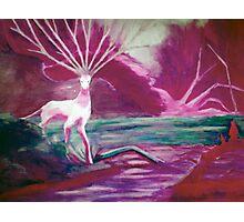 Forest Saint - diffrent color Photographic Print
