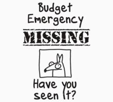 Budget Emergency! by firstdog