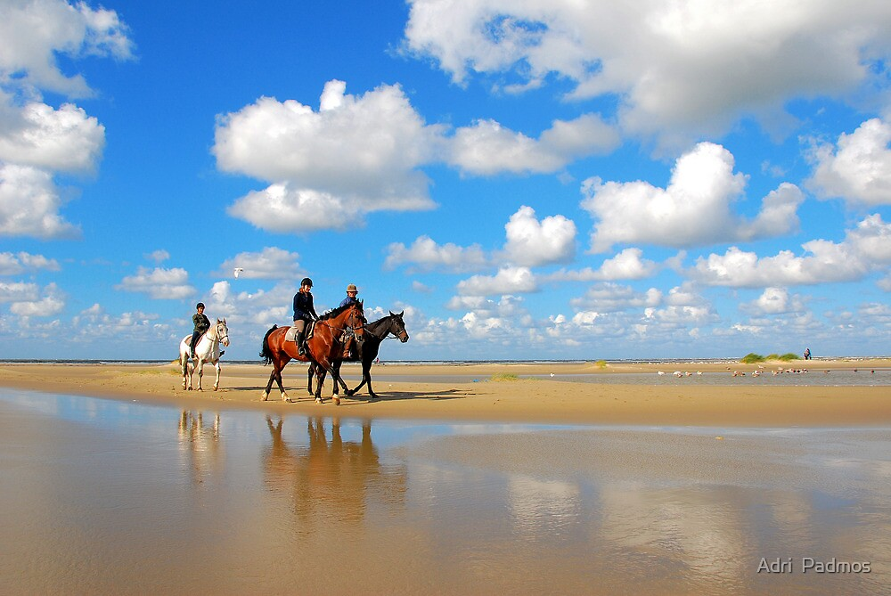 A horse ride on the beach by Adri  Padmos