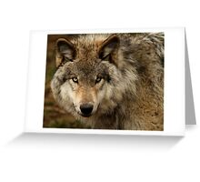 Undivided attention Greeting Card