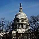 Capitol Dome by cclaude