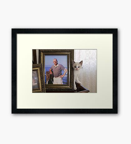 Misty, Where Are You? Framed Print