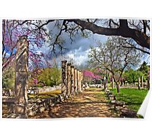 Springtime in Ancient Olympia Poster
