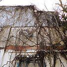 Poison Ivy Covered by WildestArt