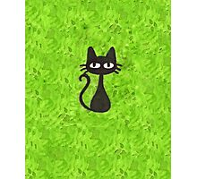 Black Cat with Green Background Photographic Print