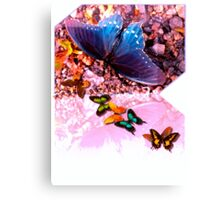 Butterfly stream Canvas Print