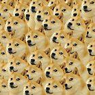 Doge by Destructor1123