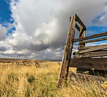 Cattle Squeeze Chute by Jim Stiles