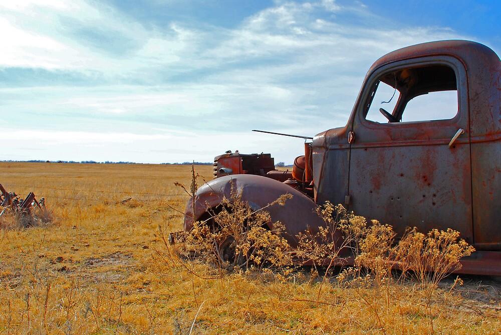 Prairie Rust by Suz Garten