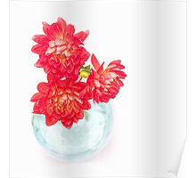 Dahlias in a vase... Poster