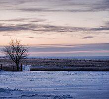 Snowy Prairie Landscape by Suz Garten
