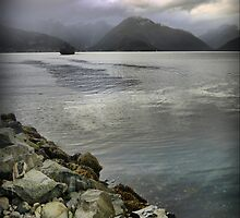 Grey Over the Sognefjord ( 2 ) by Larry Lingard-Davis