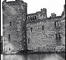 Bodiam Castle by Lisa Hafey