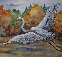 Great White Egret by Jeanne Vail