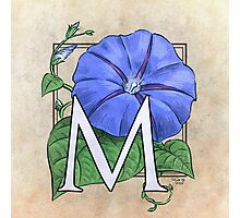 M is for Morning Glory - full image shirt Photographic Print