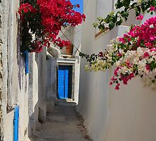 Streets of Pyrgos by Barbara  Brown