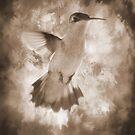 Strength of a Hummingbird by DottieDees