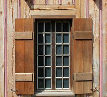 Brown Window with Pink Vertical by marybedy