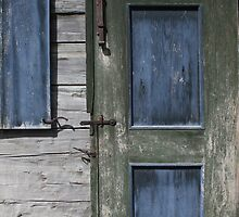 Green Door Blue Shutter by marybedy