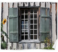 Green Window with Sunflower Poster