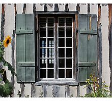 Green Window with Sunflower Photographic Print