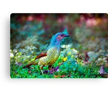 Rainbow Bower... Canvas Print