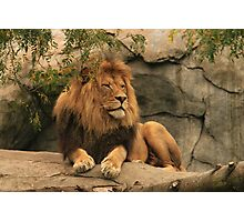 The King of Kings Photographic Print