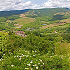 Radda Panorama by Adrian Alford Photography