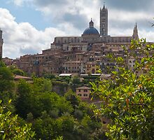 Siena by Adrian Alford Photography