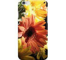 Daiseys iPhone Case/Skin