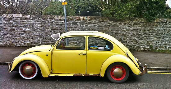 Yellow Beetle by hilary bravo