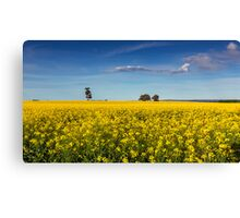 A Golden Bake Canvas Print