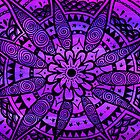 Purple Paisley Daisy by Wealie