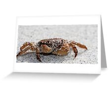 The Sandy Crab Greeting Card