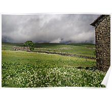 Dales Barns near Malhamdale Poster