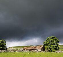 Sunlit Barn near Malhamdale by Nick Jenkins